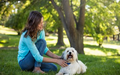 Why I Choose to be a Pet Care Professional
