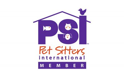 pet-parade-plus-in-the-psi-pet-sitter-spotlight